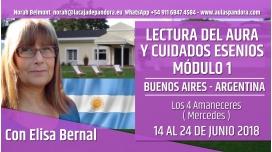 Del 14 al 24 de Junio 2018 ( Argentina ) - RESERVA - FORMACIÓN: Lectura del Aura y Cuidados Esenios - MÓDULO 1 con Elisa bernal