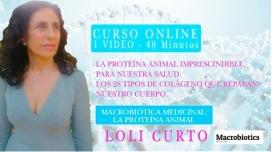 CURSO DE NUTRICIÓN MACROBIÓTICA MEDICINAL: LA PROTEÍNA ANIMAL
