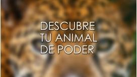DESCUBRE TU ANIMAL DE PODER – Curso de Ana Hatun Sonqo